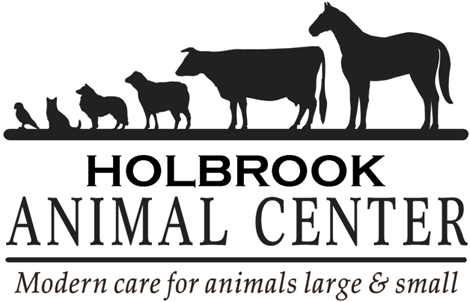 Holbrook Animal Center